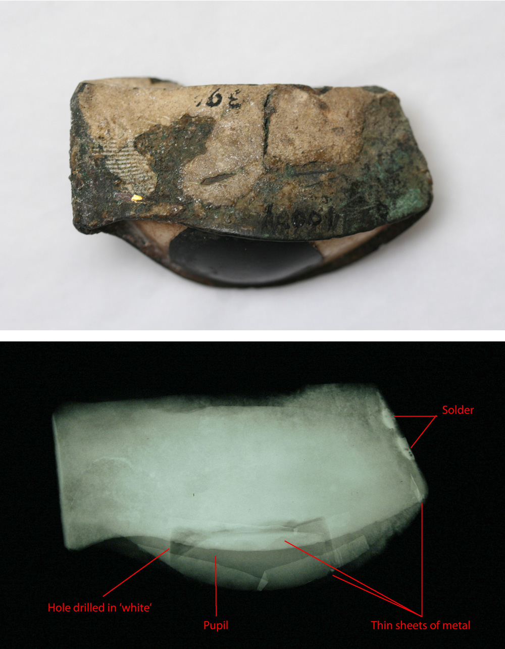 Ancient Egyptian inlaid eye, E.GA.4001.1943: (top) view of the eye from below; (bottom) x-radiograph of the eye from the same position, showing some of the technical features