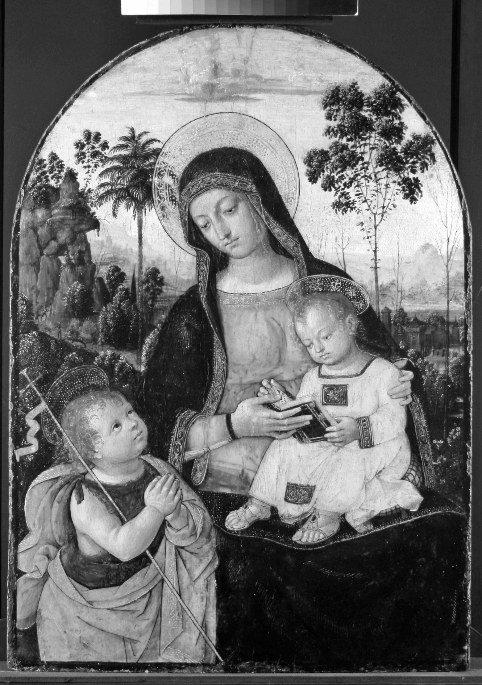 Fig. 2 Infrared reflectogram of Virgin and Child (©Titmus)